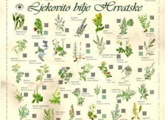 Oznaka Botanicki Vrt Povijest Hr