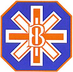 Logo Britansko-izraelske organizacije